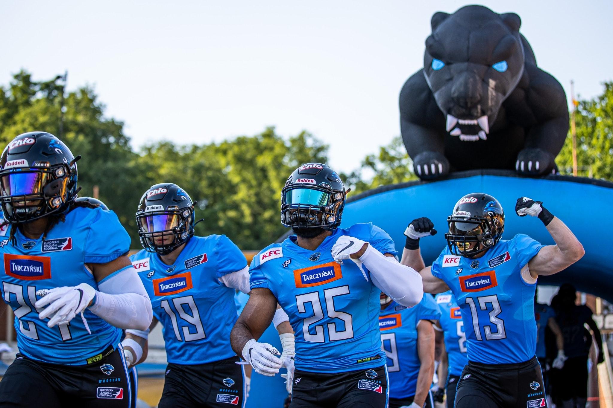 Panthers Wrocław ELF.jpg